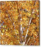 Autumn Golden Leaves Canvas Print