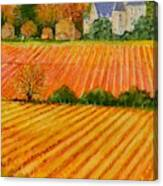 Autumn In French Vineyards Canvas Print