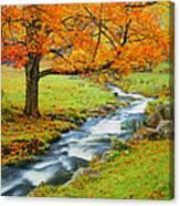 Autumn In Vermont G Canvas Print