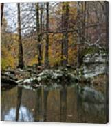 Autumn On The Kings River Canvas Print