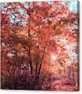 Autumn Path Reimagined Canvas Print