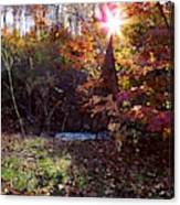 Autumn Starburst Canvas Print