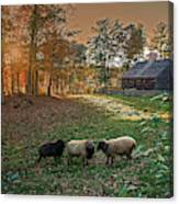 Autumn Sunset At The Old Farm Canvas Print