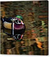 Autumn Woody Canvas Print