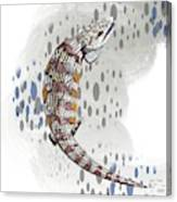 B Is For Blue Tongue Lizard Canvas Print