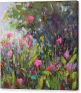 Backyard Surprises Canvas Print
