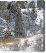 Badlands Winter Canvas Print