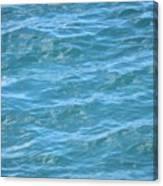 Bahamas Blue Canvas Print