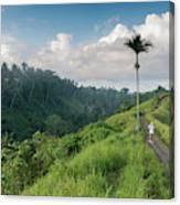 Bali Pathway Canvas Print