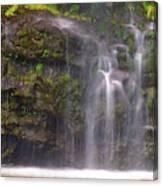 Base Of Waimoku Falls Canvas Print