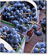 Baskets Of Grapes Canvas Print