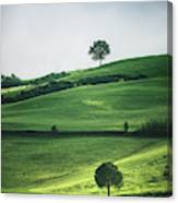 Bathed In Emerald Canvas Print