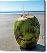 Beach Coconut Canvas Print