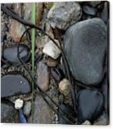 Beach Kanji Canvas Print