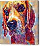 Beagle 3 Canvas Print