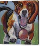 Beagle Chasing Ball Canvas Print