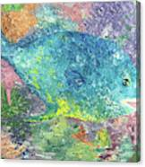 Beauty Of The Reef Canvas Print