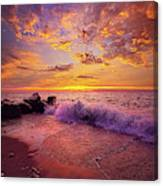 Beautiful Things Never Ask For Attention Canvas Print