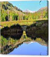 Beaver Pond Reflection Canvas Print