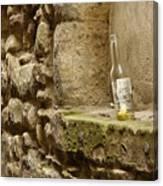 beer bottle left in old lane in Edinburgh Canvas Print