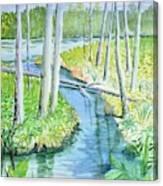 Bemidji Bog Walk Lost Keys Canvas Print