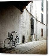 Bicycle Leaning Wall Canvas Print