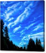 Big Sky And Trees Canvas Print