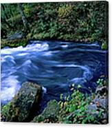 Big Spring, Ozarks National Scenic Canvas Print