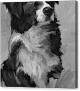Black and White Pup Canvas Print