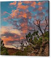 Black Canyon Sunrise Canvas Print