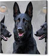 Black German Shepherd Dog Collage Canvas Print