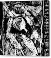 Black Ivory Actual 1b21x Canvas Print