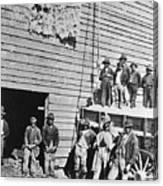 Black Men At Cotton Barn Canvas Print