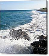 Black Sand Beach Canvas Print