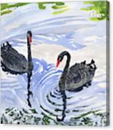 Black Swans - Soulmate Canvas Print