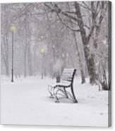 Blizzard In The Park Canvas Print