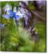 Blue And Green 2 Canvas Print