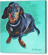 Blue Dachshund  Canvas Print