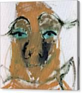 Blue Eyed Man Canvas Print