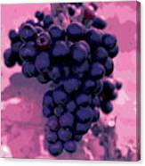 Blue Grape Bunches 6 Canvas Print