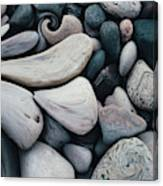 Blue Rock Garden Canvas Print