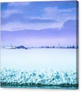 Blue Sky, White Field Canvas Print