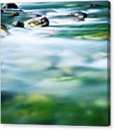 Blurred River Canvas Print