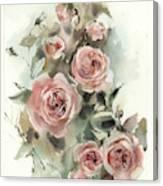 Blush Roses V Canvas Print