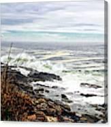 Blustry Passion Canvas Print