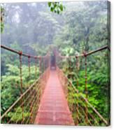 Bridge In Rainforest - Costa Rica - Canvas Print