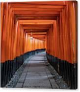 Bright Orange Torii Gates In Kyoto, Japan Canvas Print