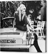 Brigitte Bardot With Dachshund Canvas Print