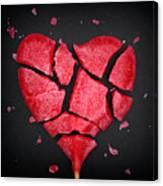 Broken Red Heart Shaped Lollipop Canvas Print