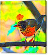 Brushed Robin Canvas Print